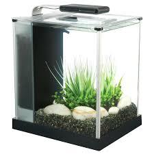 fice Design fice Desk Aquarium Full Size Fish Tank New