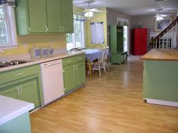 kitchen fascinating l shape kitchen decoration with light green