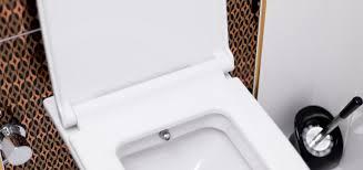 toilette urinsteine mit backpulver entfernen toilette