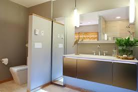 Minecraft Modern Bathroom Ideas by Photos Bath Crashers Hgtv