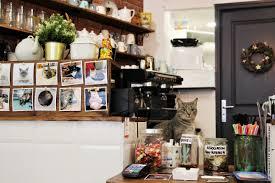 le café moustache amour chats et café les normandpolitains