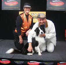 Shows & Events - Camarna Petbarn Rspca Nsw The Dog Barn Grooming St Helens Supplies Food 100 You U0026 Me Flat Roof Kennel Brown Large Edge And Create Campaign To Raise 500k For Seeing Eye Yard Bar Animates Pet Shop Warehouse Puppy Salt Sky Utah Wood Dish Holder Reclaimed Barn Beam 2 Bowl Medium 7000 Shops Stores 640 Gympie Rd Lawnton Dog Door Barn Pipethis Is Photo Of 3 For The Dog Door Bernies Home Facebook
