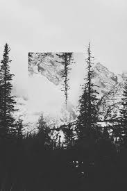Love Photography Black And White Life Trees Live Mountains Nature Travel Adventure Explore