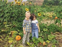Faulkner County Pumpkin Patch by Best Pumpkin Patches And Farms Near Los Angeles