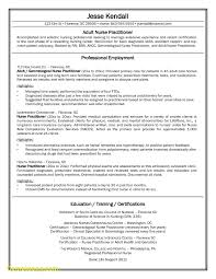Sample Resume Format For Fresh Graduates Two Page