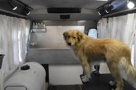 Mobile Dog Grooming Truck #2   Houston, TX. (TEXAS) Dog Truck Stock Photos Royalty Free Images Takes Semitruck For Joyride Crashes Into Tree And Parked Car Houston Food Foodie Good Hot Crate For Pickup How To Transport Dogs Safely In Quad Eastern Plant Hire Funloving Monster Truck Dog By Destroyer77 On Deviantart Stolen Reunited With Owner Days After It Was Taken The Back Of A Pickup Australia Photo 472518 Filetip Quad Trailerjpg Wikimedia Commons Home