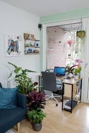 pflanzen makeover wohnzimmer home office diy für