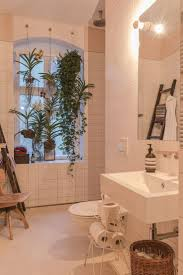 Best Plant For Dark Bathroom by The 25 Best Bathroom Plants Ideas On Pinterest Plants In