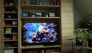 aquarium alles alltaeglich designblog