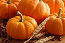 Best Pumpkin Patch Lancaster Pa harford county area u0027s best farms and pumpkin patches for fall