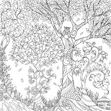 Enchanted Forest An Inky Quest Coloring Book Johanna Basford