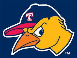 Toledo Mud Hens Cap Logo 19