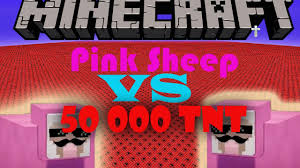 50 000 TNT VS PINK SHEEP