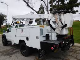 2006 White Ford F-550 - Truck Depot Bucket Truck Boom Trucks With Eti Service Body Used Ford F550 Shelby Nc Eti Etc35snt Ar Auctions Online Proxibid Etc37ih 2015 4x4 Custom One Source 2012 Dodge Ram 5500 4x4 Bucket Truck St City Tx North Texas Equipment 2008 Ford Sd Service Utility For Sale 10874 2013 F450 Wwwtopsimagescom 1999 Super Duty Buck Te 2014 Mercedesbenz Sprinter T5 First Look Photo Image Gallery 4x2 Sta62556 Youtube 2005 E350 Boom 11050