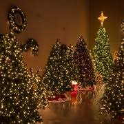 Fred Meyer Ballard Christmas Trees by Christmas Lights Etc 11 Photos Home Decor 205 Curie Dr