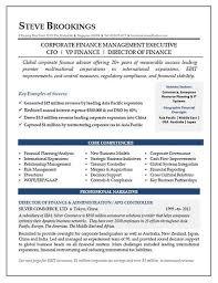 CFO Resume Sample Vice President Of Finance Director