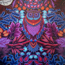 Take A Peek At This Great Artwork On Johanna Basfords Colouring Gallery Find Pin And More Owlsecretgarden