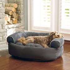 Dog Beds At Amazon Restateco With Regard To New Residence Plan