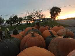 Hurricane Utah Pumpkin Patch by Cross E Ranch Fall Festival Presented By Cross E Ranch