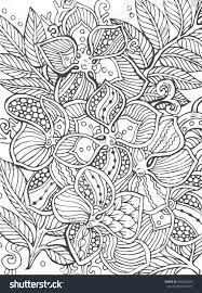 Tropical Flowers Hand Drawn Floral Pattern In Black And White Adult Coloring Book