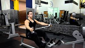 Reverse Pec Deck Flyes With Dumbbells by Spread Your Wings Back Training Unravelled Totalshape Com