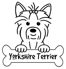 Gallery For Yorkie Terrier Coloring Pages