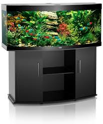 juwel aquarium vision 260 juwel vision 260 black fish farm