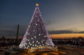 The National Christmas Tree On Day In Washington DC