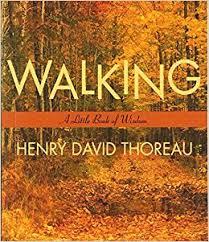 Walking Little Books Of Wisdom Henry David Thoreau 9780062511133 Amazon
