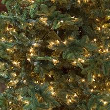 75 Foot Pre Lit Christmas Tree by Belham Living 7 5 Ft Natural Evergreen Clear Pre Lit Full