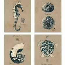 Destinations By Regina Andrew Skull Lamp by 66 Best Ebb Flow Label Images On Pinterest Bottle Design