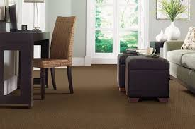 artistic living room rug ideas using brown carpet floor under two