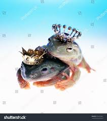 100 King Of The Frogs Queen Stock Photo Edit Now 574012207