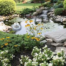 Backyard Pond Kit Solar » Design And Ideas Pond Kit Ebay Kits Koi Water Garden Aquascape Koolatron 270gallon 187147 Pool At Create The Backyard Home Decor And Design Ideas Landscaping And Outdoor Building Relaxing Waterfalls Garden Design Small Features Square Raised 15 X 055m Woodblocx Patio Pond Ideas Small Backyard Kits Marvellous Medium Diy To Breathtaking 57 Stunning With How To A Stream For An Waterfall Howtos Tips Use From Remnants Materials