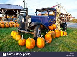 Pumpkins Old Truck Agriculture Stock Photos & Pumpkins Old Truck ... Southern Survivor 1949 Chevrolet Ck Pickup 3500 Farm Pick Up For Sale 169802356731112salested19fordpiuptruck52l Cars 1968 C10 4x4 For Salefarm Truckvery Rareready To 1955 Intertional R110 Sale Pickups Panels Vans Original 1975 Ford Farm And Ranch Truck Sales Brochure Cars Trucks A David Cooper Transport Cattle Market Truck Waiting Load Lyle Sharon Adair Unreserved Tirement Farm Auction 1967 Fast Lane Classic Equipment Private Treaty 1961 Chevrolet C60 Grain Silage Auction Or Clw Brand 5 385tons Electronhydraulic Auger Bulk Feed Pellet Ford F600 Medium Duty
