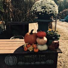 Lodi Pumpkin Patch by Ward U0027s Pumpkin Patch Home Facebook