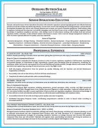 Mechanic Resume Examples Statistician Example Statistics Entry Level Samples