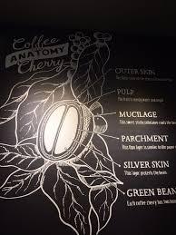 Pumpkin Spice Baileys Edmonton by Starbucks Coffee U0026 Tea 112 Street Nw Edmonton Ab Phone