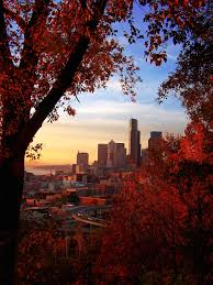 Seattle Pumpkin Patch by 10 5 Things To Do In Seattle This Fall