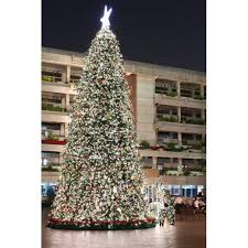 Paramount Spruce Christmas Tree Outdoor With Lights