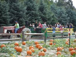 Pumpkin Picking Lancaster County Pa by County U0027agri Tainment U0027 In Full Fall Swing At Corn Cob Acres And