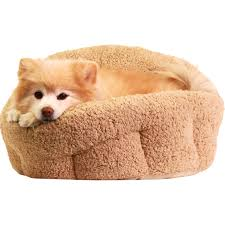 Wayfair Dog Beds by Bedroom Terrific Small Dog Beds Best The Market For Arthritic
