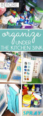 Plink Your Sink Poison by Organizing With Style The Best Ways To Organize Under The Kitchen