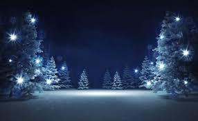 Christmas Tree Meringues Uk by A La Carte Menu Llanrhaeadr Springs Exclusive Wedding Venue