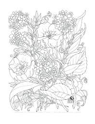 Adult Flower Coloring Pages Page Flowers Pdf