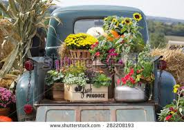 Vintage Truck Carrying Load Of Flowers