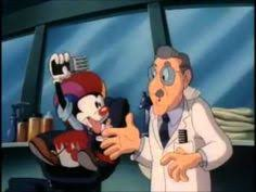 animaniacs episode hooked on a ceiling entertainment pinterest