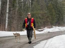 Prospector Glenn McBride Walks Along A Mining Road Near Cobalt Ontario April 27 2018Tyler Anderson National Post