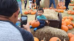 Pumpkin Patch Bastrop County by Check Out Our September Family Events Calendar