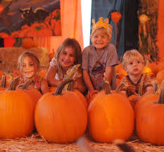 Joans Pumpkin Patch by Pumpkin Patch Hell Or A Brilliant Business Idea California To